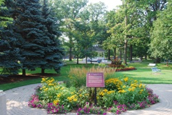 Parks and Conservation Areas in Brampton