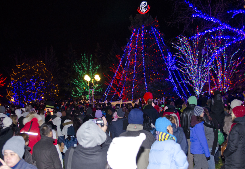 photos annual christmas tree lighting in brampton ontario canada