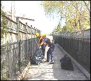 Litter and Debris Pickup