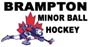 Brampton Minor Ball Hockey