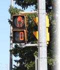 Pedestrian Countdown Signal