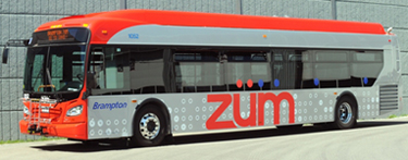 Side of Zum Bus