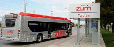 Zum Bus and Station Stop